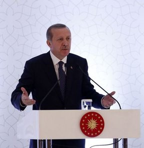Erdoğan'dan, Terim yorumu